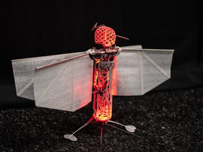 Flapper Drone with onboard lights