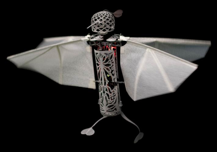 Flapper Drone in flight